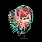 All Them Witches - Rats in Ruin